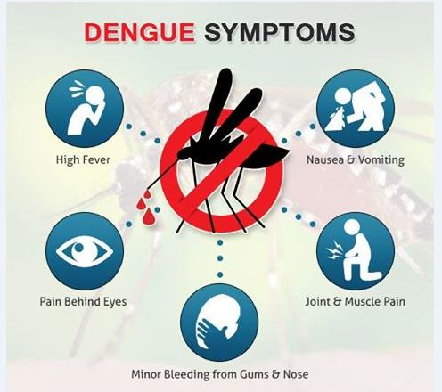 Dengue-Symptoms