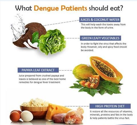 What-Dengue-Patient-Should-Eat